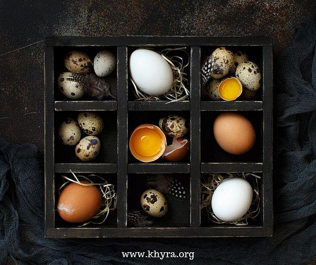 www.khyra.org (30)